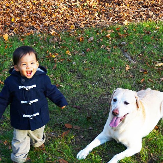 These 2 Love his personality!! That smile We included thishellip